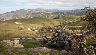 Fort Ord Lands